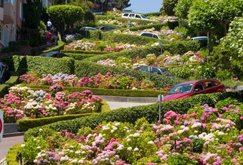 San Francisco's Lombard Street.
