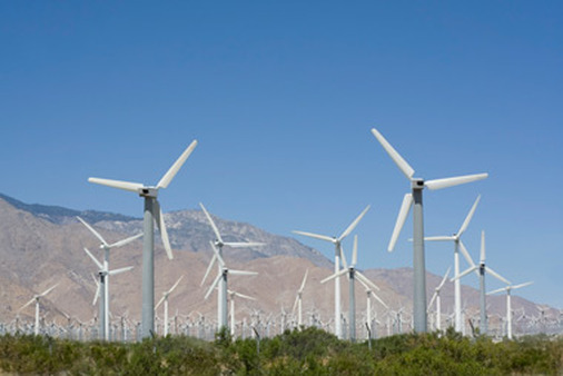 A windmill farm generates energy and jobs.