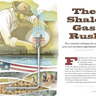 The Shale Gas Rush