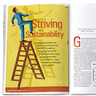 Striving for Sustainability: 2012 Growth by Design Study
