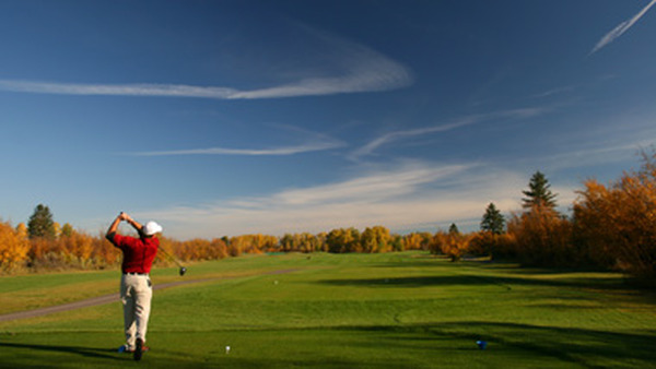 Will your monthly income in retirement be enough to support a golf habit? Under this bill, you could find out easily.