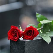 New York Life to Promote App Aimed at Bereaved Families