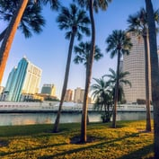 Florida Is America's Future: Retired, Politically Active, Collecting Social Security