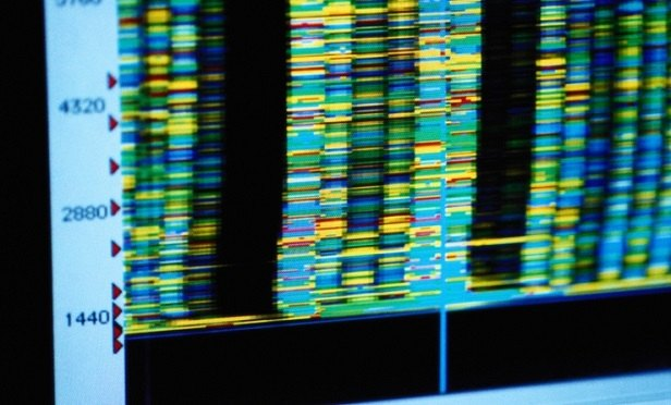 DNA data (Photo: Thinkstock)