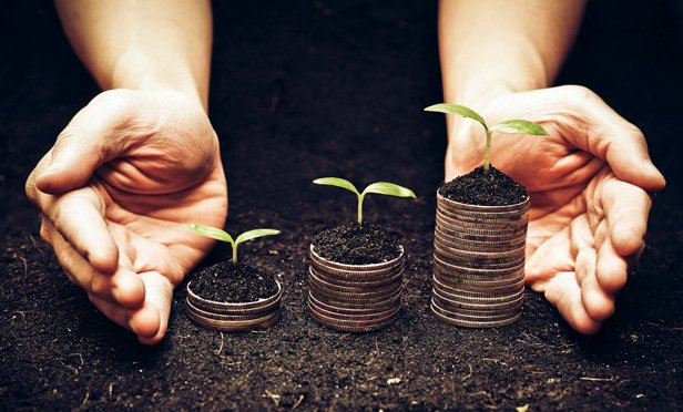 Study Finds Good News for 11 College Endowments That Embraced Sustainable Investing