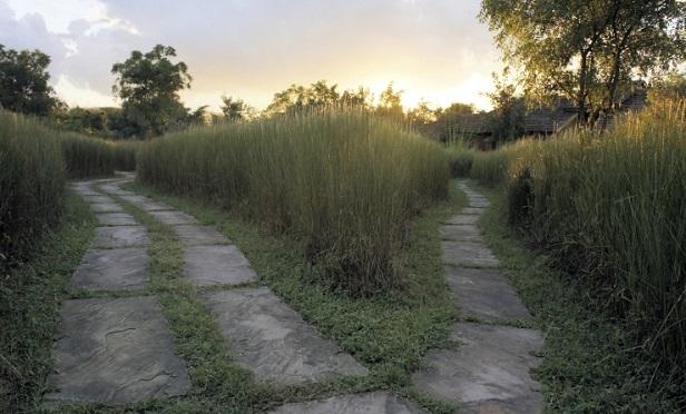 A split path
