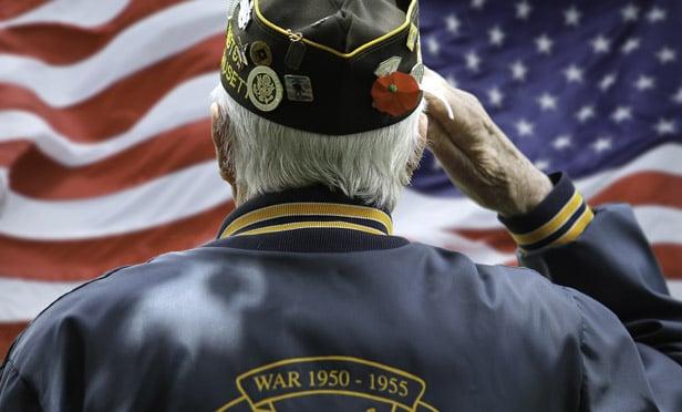Veteran Saluting Flag Military MI.