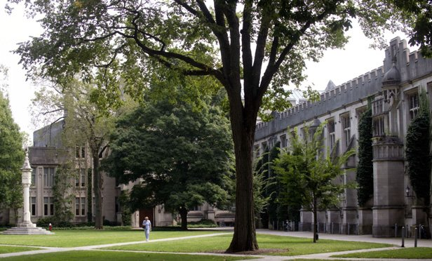 College Endowment Returns Plummet: Study