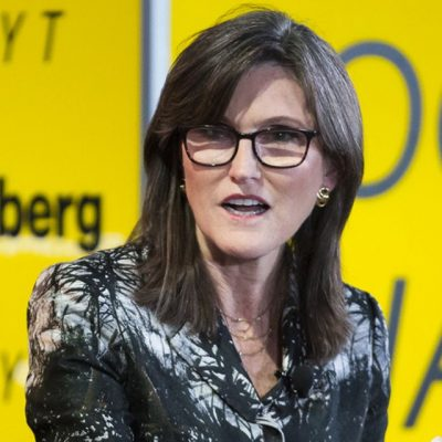Ark's Cathie Wood Still Hot on Bitcoin and Tesla Despite Big Drops