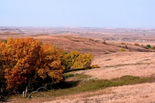 The big rush comes in the fall. (USDA photo)