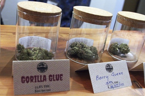 THC levels in marijuana today often are 15 percent or higher, compared to 4 percent in the 1980s. This photo shows some of the marijuana available for sale at legal dispensary in Juneau, Alaska. (Photo: AP Images)