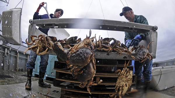 Crabbers on the fishing grounds in southeast Alaska. (Photo: AP)