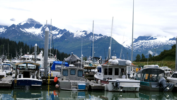 Valdez harbor.