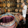 Napa Earthquake Could Cost $4 Billion as Wineries Close