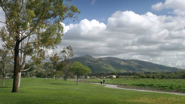Mission Peak from Fremont Central Park. (Photo: Wikimedia Commons)