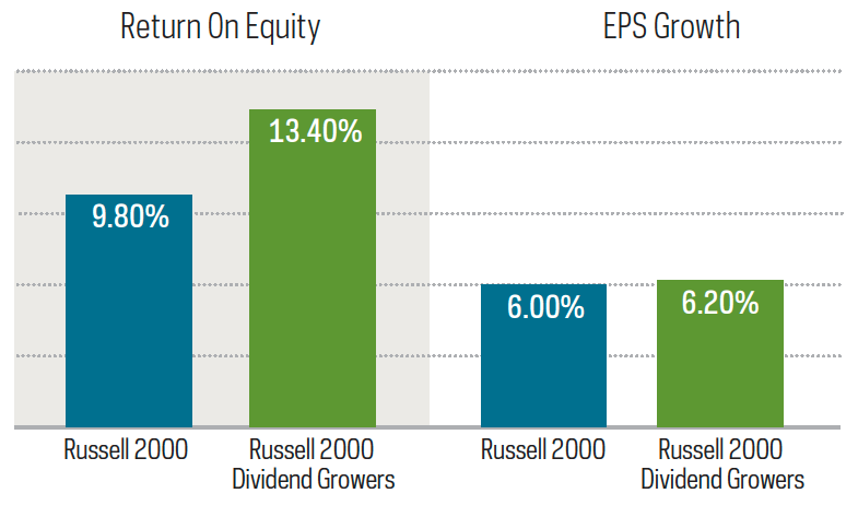 Small cap dividend growers-3