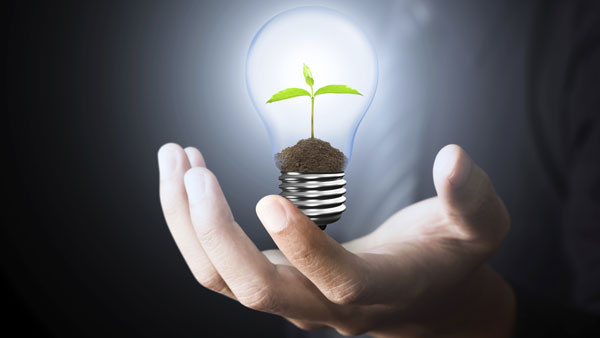 How Socially Responsible Investing Strategies Are Built: A Case Study