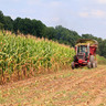 Farmland: An Increasingly Popular Alternative Investment