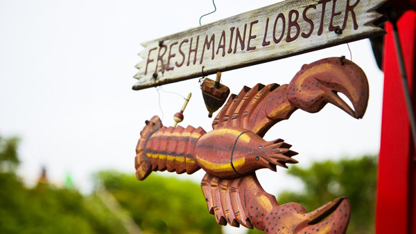 Maine lobster sign.